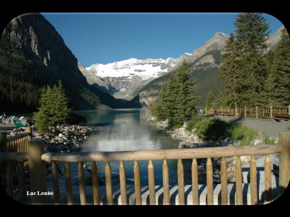 Chutes Athabasca au Parc national de Banff