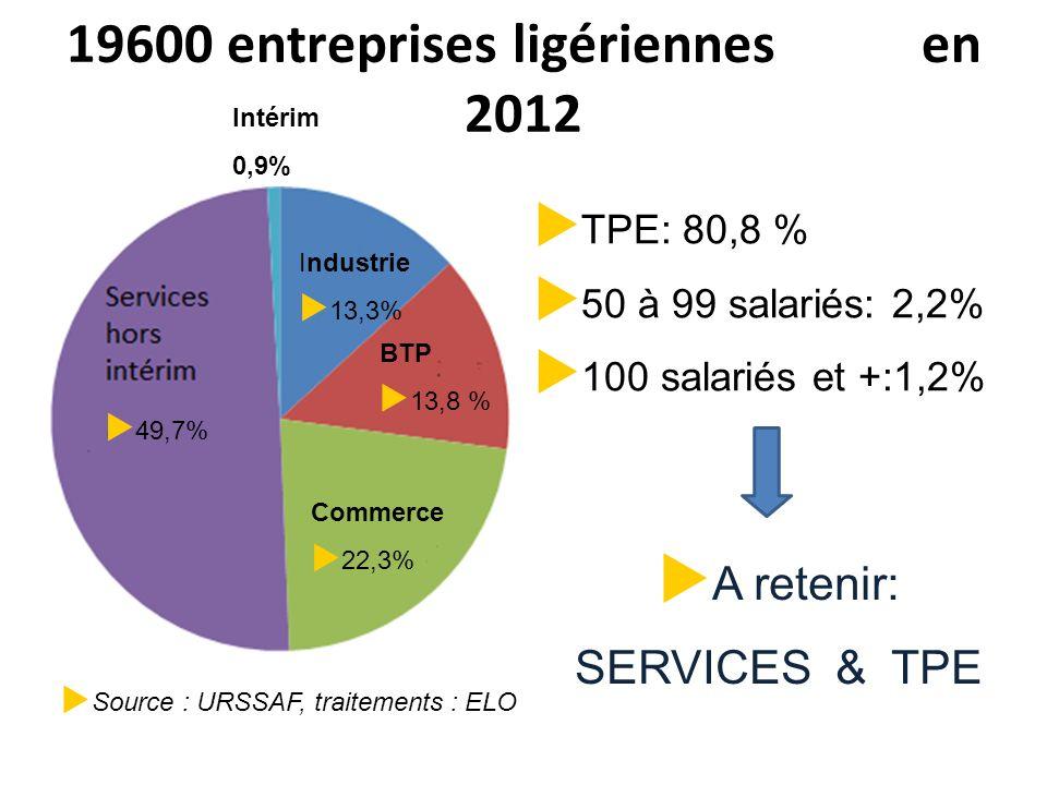 19600 entreprises ligériennes en 2012 49,7% Commerce 22,3% BTP 13,8 % Industrie 13,3% Intérim 0,9% TPE: 80,8 % 50 à 99 salariés: 2,2% 100 salariés et