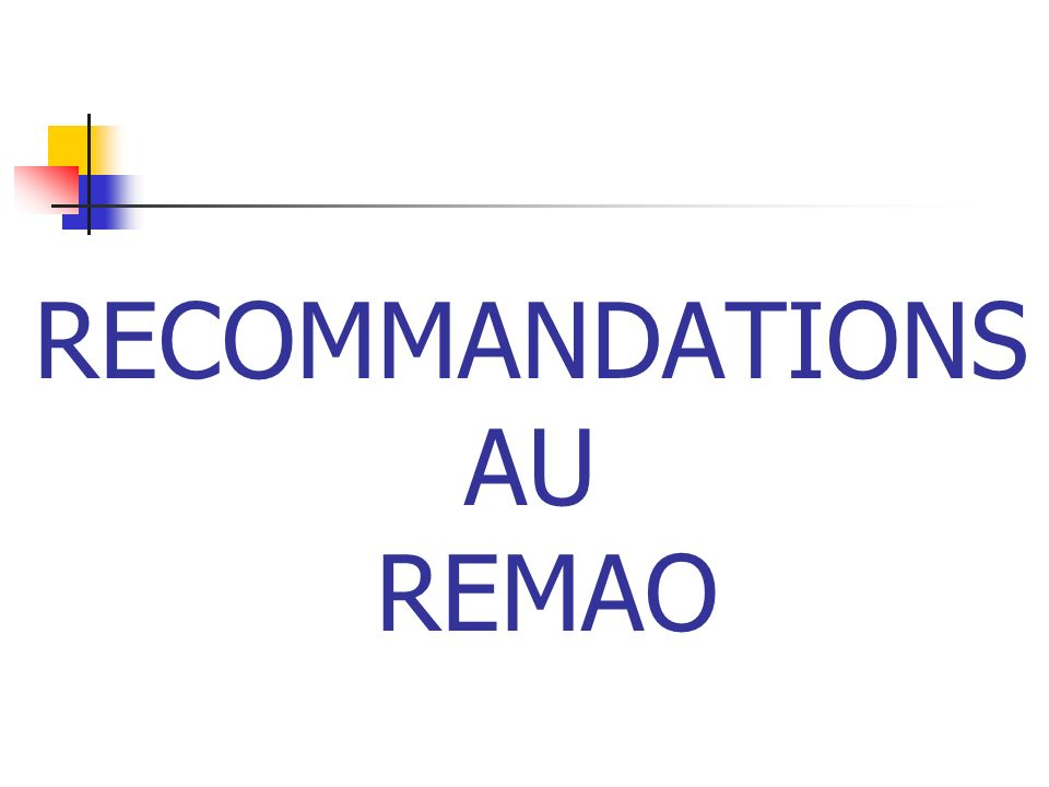 RECOMMANDATIONS AU REMAO