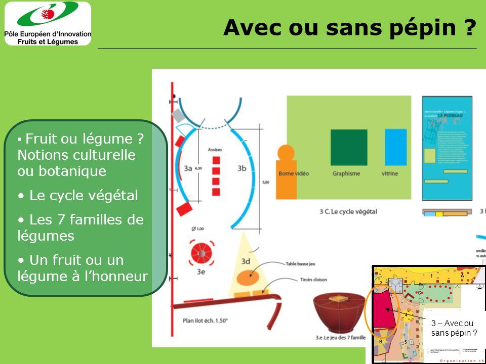 Fruit ou légume ? Notions culturelle ou botanique Le cycle végétal Les 7 familles de légumes Un fruit ou un légume à lhonneur Avec ou sans pépin ? 3 –