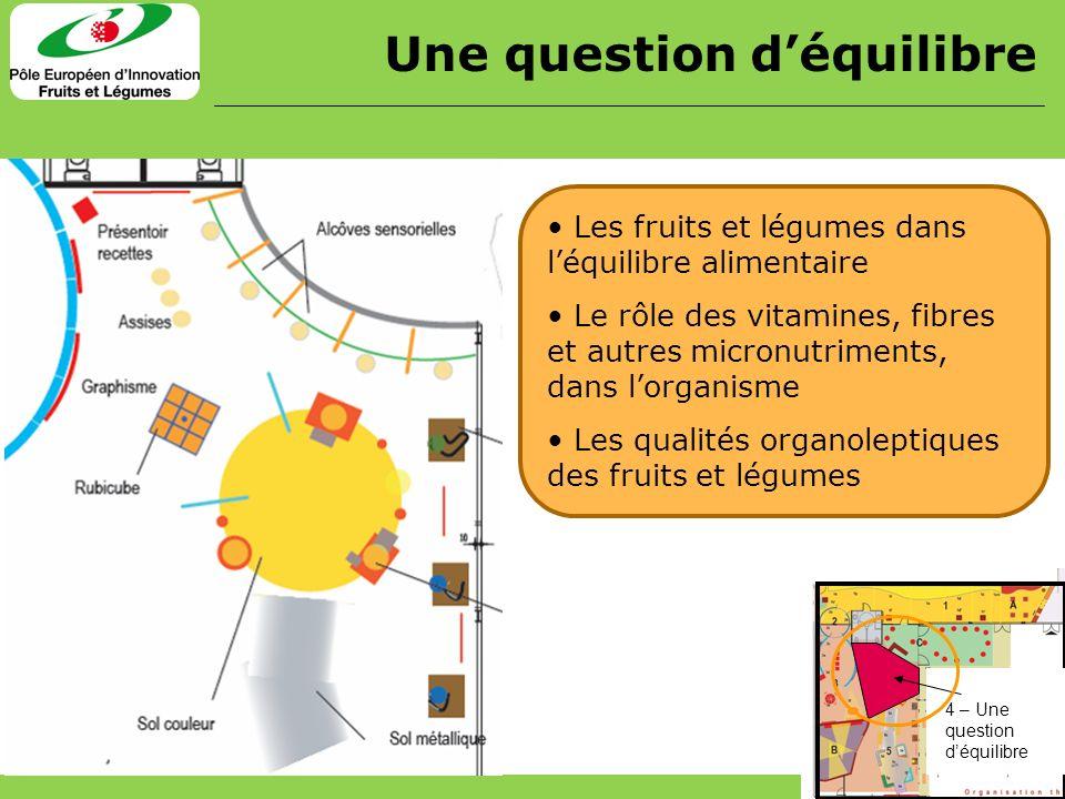 Les fruits et légumes dans léquilibre alimentaire Le rôle des vitamines, fibres et autres micronutriments, dans lorganisme Les qualités organoleptique