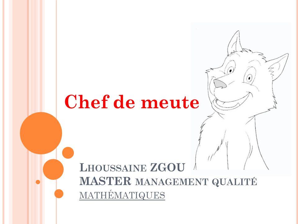 L HOUSSAINE ZGOU MASTER MANAGEMENT QUALITÉ MATHÉMATIQUES Chef de meute