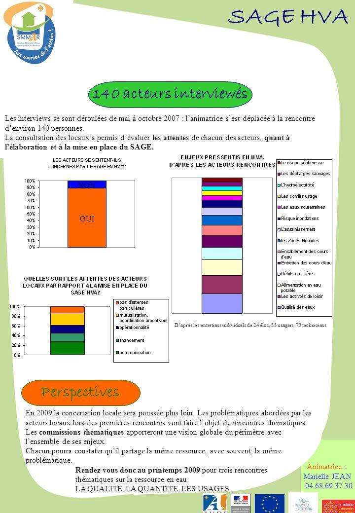 Comité syndical du 29 février 2008 SAGE HVA Animatrice : Marielle JEAN 04.68.69.37.30 En 2009 la concertation locale sera poussée plus loin. Les probl
