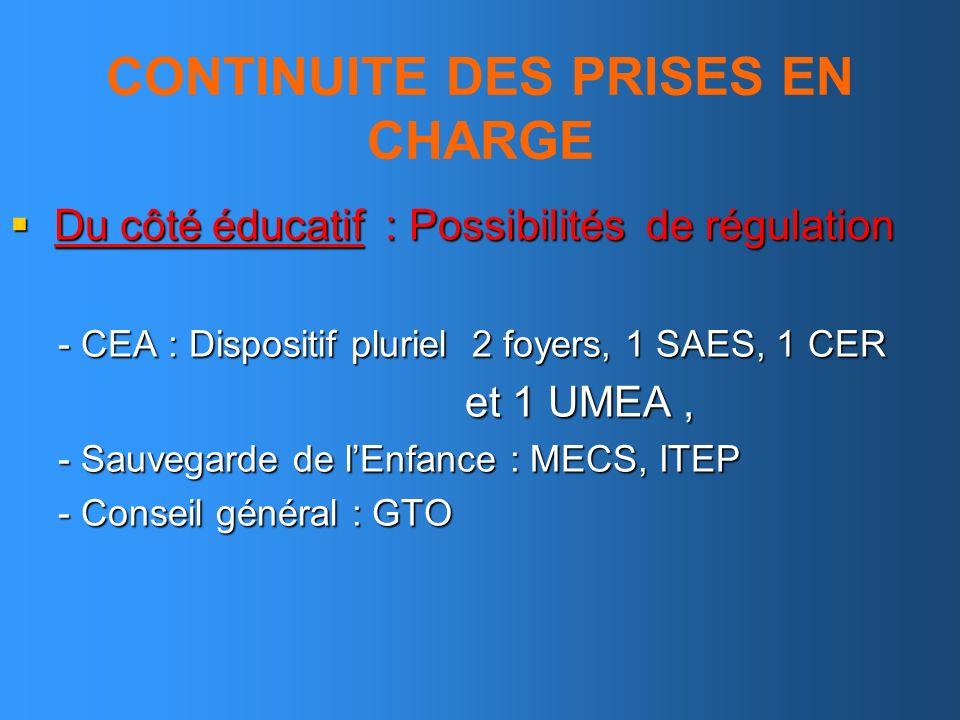 CONTINUITE DES PRISES EN CHARGE Du côté éducatif : Possibilités de régulation Du côté éducatif : Possibilités de régulation - CEA : Dispositif pluriel
