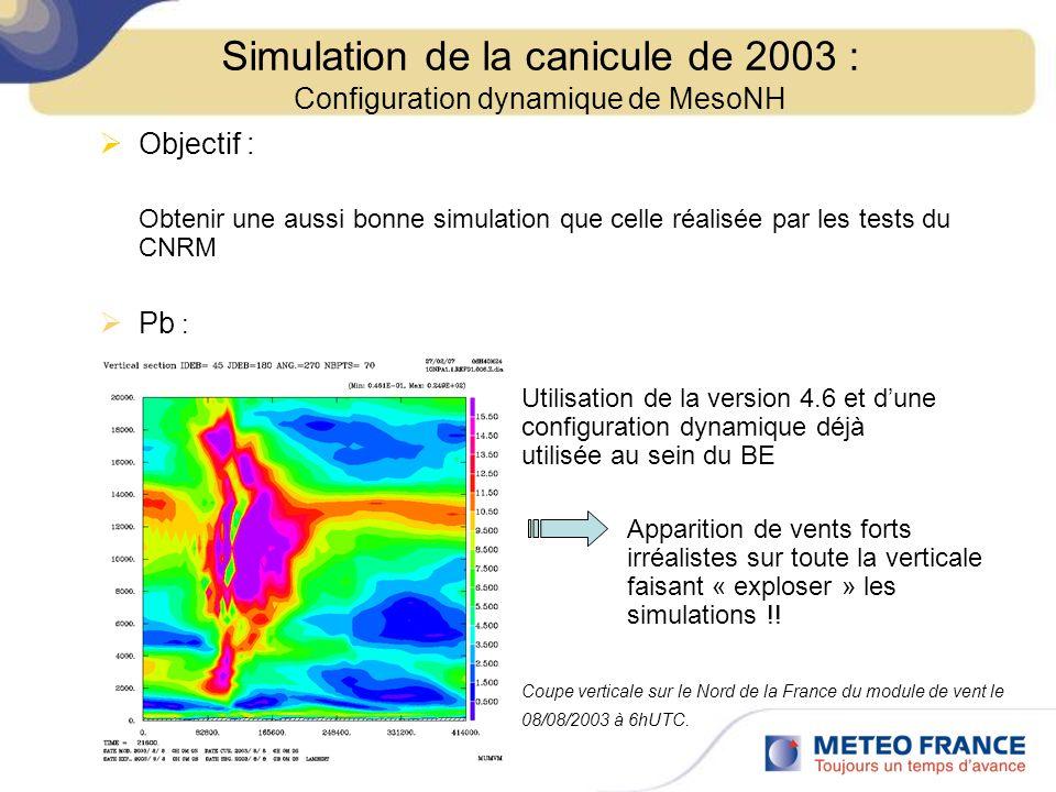 Objectif : Obtenir une aussi bonne simulation que celle réalisée par les tests du CNRM Pb : Utilisation de la version 4.6 et dune configuration dynami