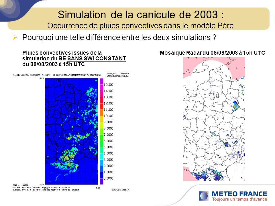 Pourquoi une telle différence entre les deux simulations ? Pluies convectives issues de la Mosaïque Radar du 08/08/2003 à 15h UTC simulation du BE SAN