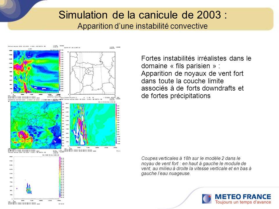 Fortes instabilités irréalistes dans le domaine « fils parisien » : Apparition de noyaux de vent fort dans toute la couche limite associés à de forts