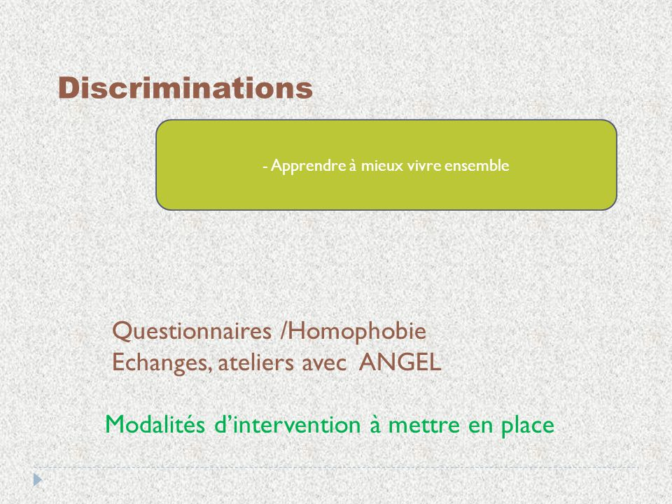 Discriminations - Apprendre à mieux vivre ensemble Questionnaires /Homophobie Echanges, ateliers avec ANGEL Modalités dintervention à mettre en place