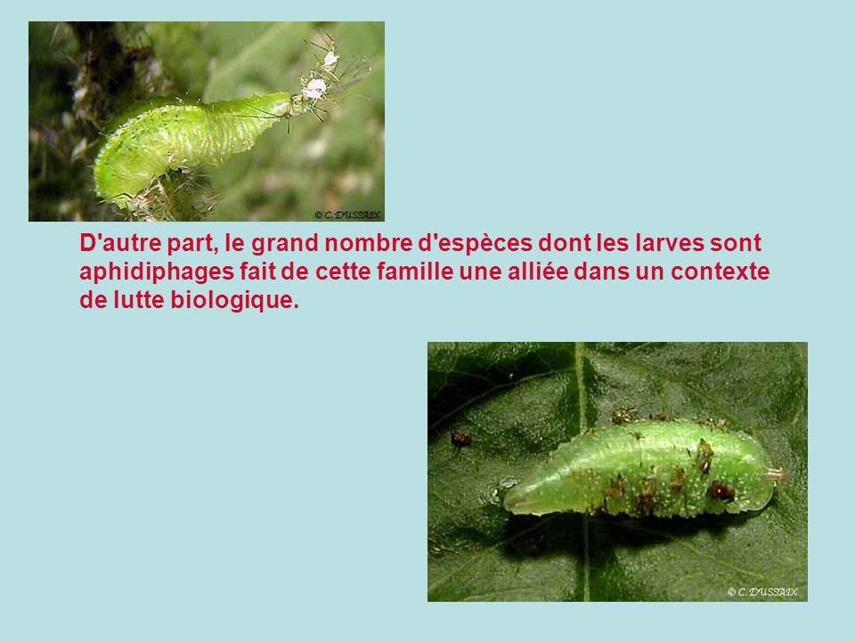 D'autre part, le grand nombre d'espèces dont les larves sont aphidiphages fait de cette famille une alliée dans un contexte de lutte biologique.