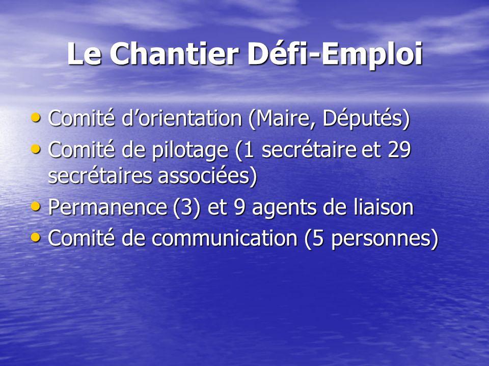 Le Chantier Défi-Emploi Comité dorientation (Maire, Députés) Comité dorientation (Maire, Députés) Comité de pilotage (1 secrétaire et 29 secrétaires a