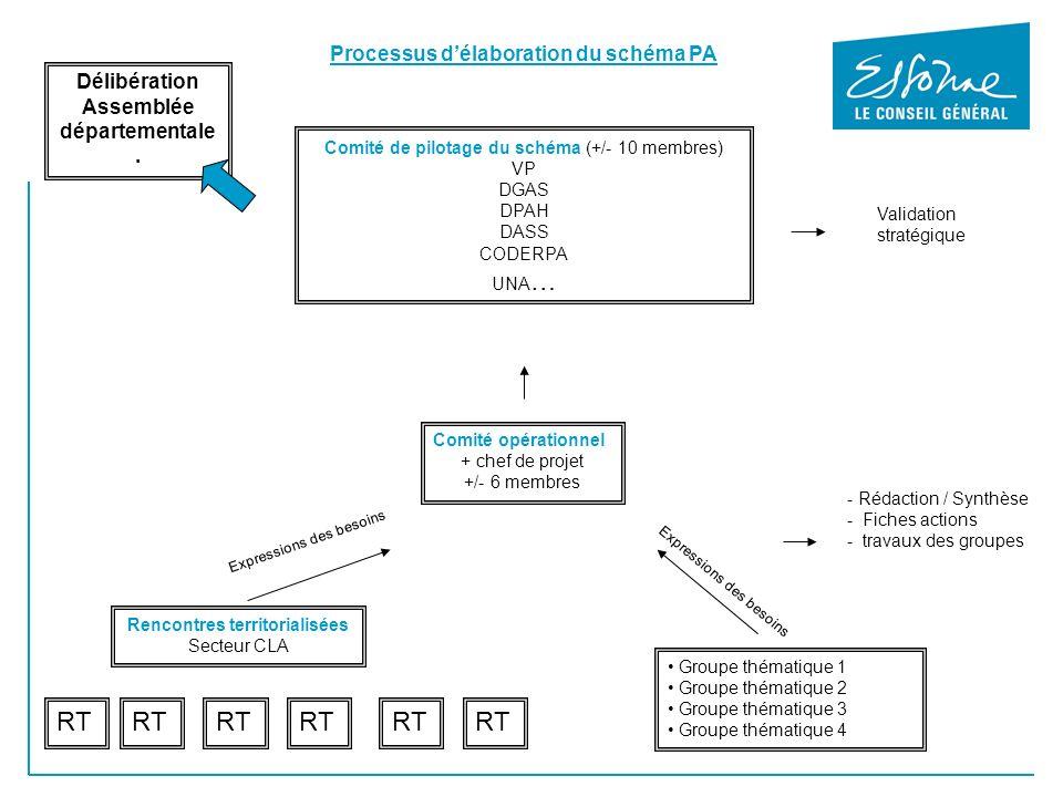Comité de pilotage du schéma (+/- 10 membres) VP DGAS DPAH DASS CODERPA UNA … Processus délaboration du schéma PA Comité opérationnel + chef de projet