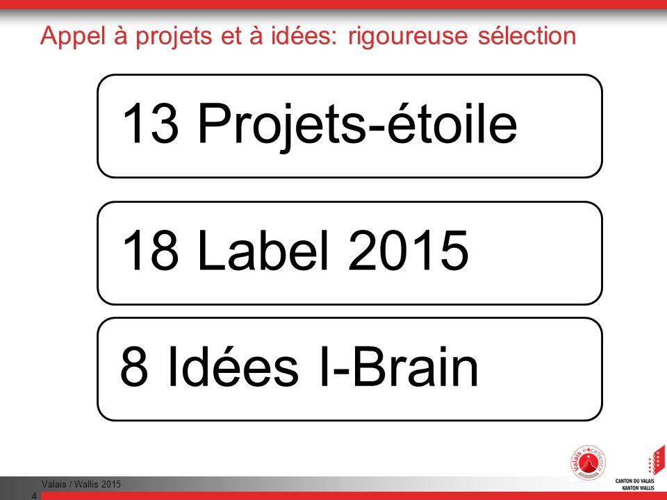 Valais / Wallis 2015 4 Appel à projets et à idées: rigoureuse sélection 13 Projets-étoile18 Label 20158 Idées I-Brain