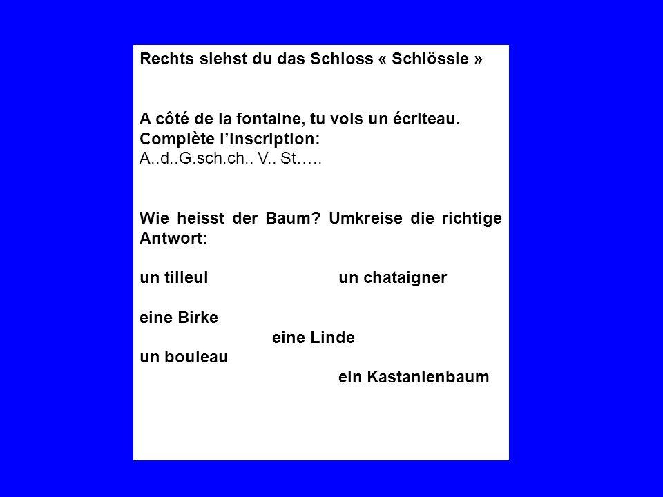 Rechts siehst du das Schloss « Schlössle » A côté de la fontaine, tu vois un écriteau. Complète linscription: A..d..G.sch.ch.. V.. St….. Wie heisst de