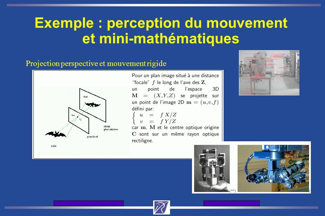 Journes d'accueil de l'INRIA12 et 13 dcembre 2001 Exemple : perception du mouvement et mini-mathématiques Projection perspective et mouvement rigide