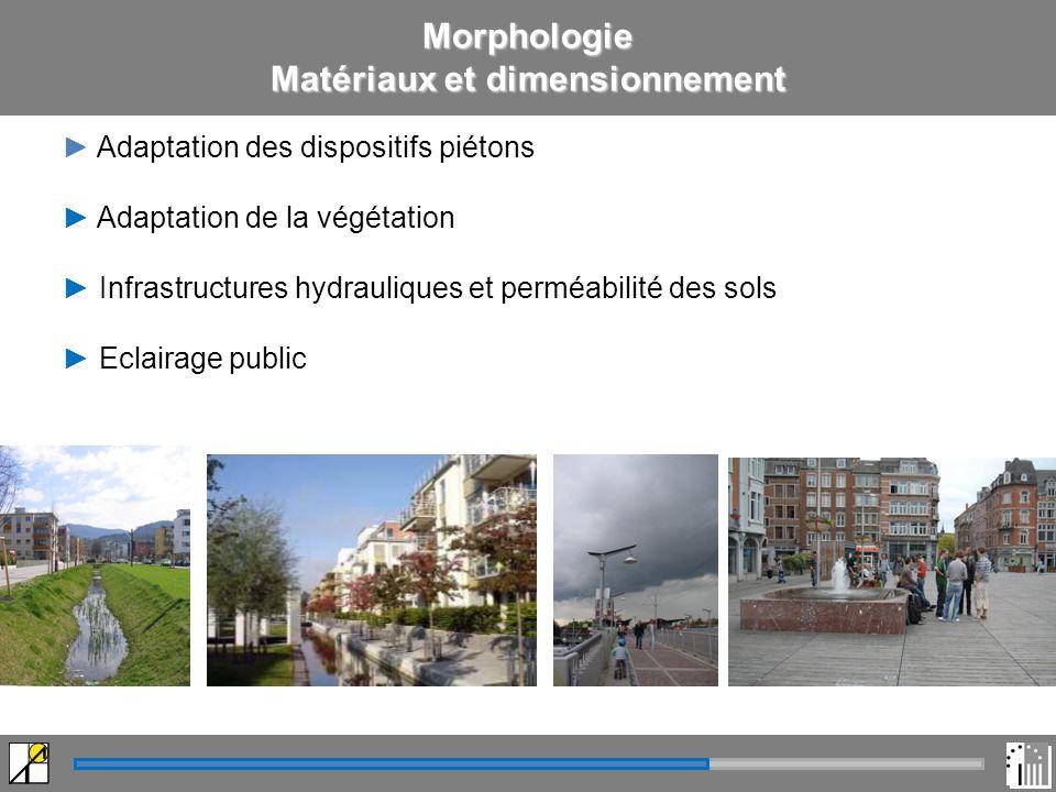 Morphologie Matériaux et dimensionnement Adaptation des dispositifs piétons Adaptation de la végétation Infrastructures hydrauliques et perméabilité des sols Eclairage public