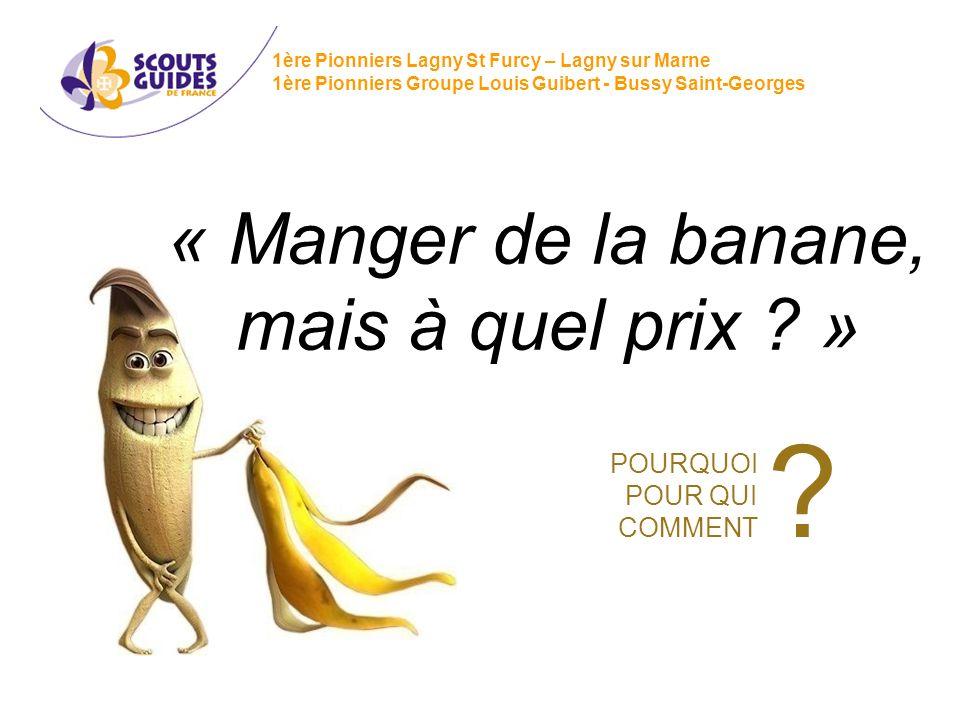 « Manger de la banane, mais à quel prix ? » 1ère Pionniers Lagny St Furcy – Lagny sur Marne 1ère Pionniers Groupe Louis Guibert - Bussy Saint-Georges