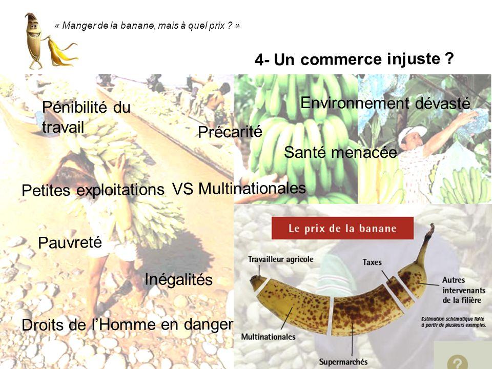 « Manger de la banane, mais à quel prix ? » Petites exploitations VS Multinationales Pénibilité du travail Pauvreté Inégalités Précarité Droits de lHo