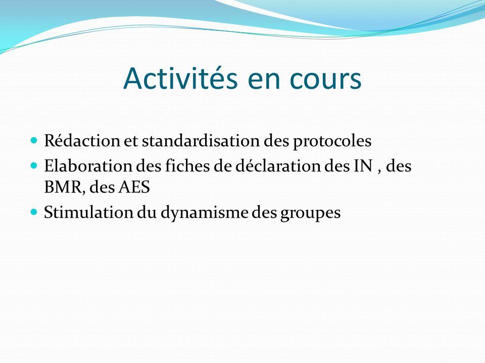 Activités en cours Rédaction et standardisation des protocoles Elaboration des fiches de déclaration des IN, des BMR, des AES Stimulation du dynamisme