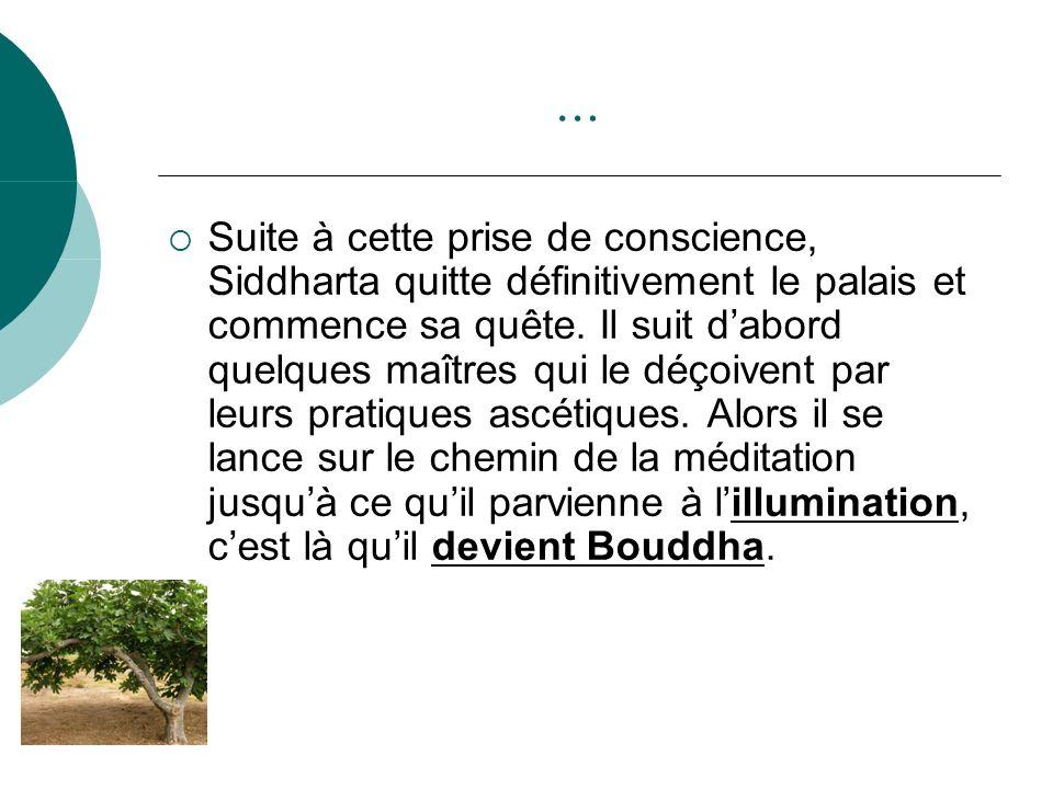 … Suite à cette prise de conscience, Siddharta quitte définitivement le palais et commence sa quête. Il suit dabord quelques maîtres qui le déçoivent