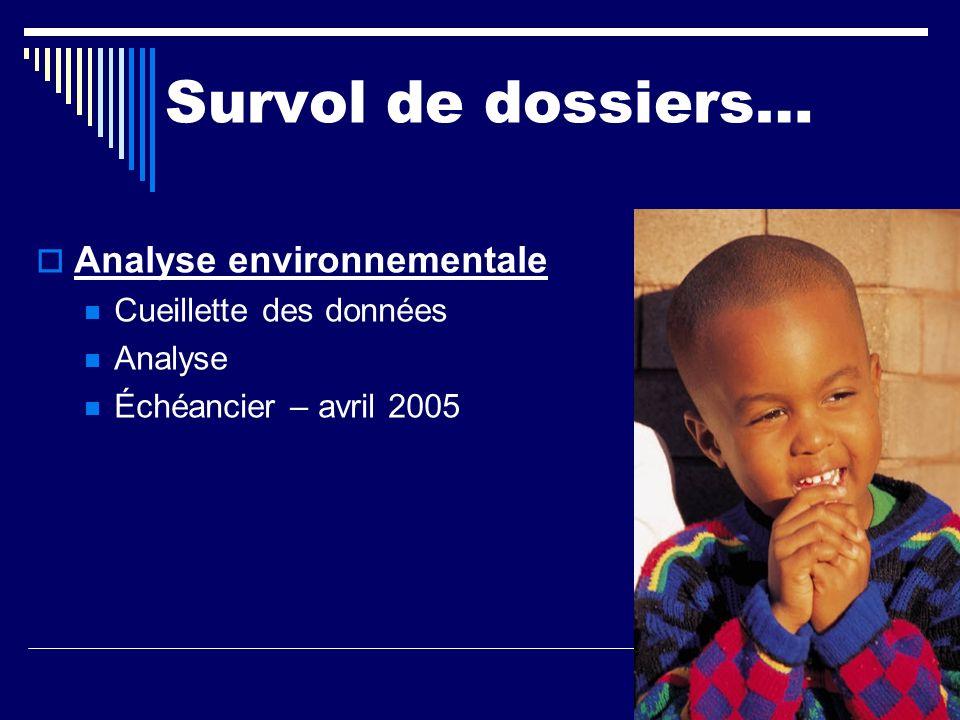 Survol de dossiers… Analyse environnementale Cueillette des données Analyse Échéancier – avril 2005