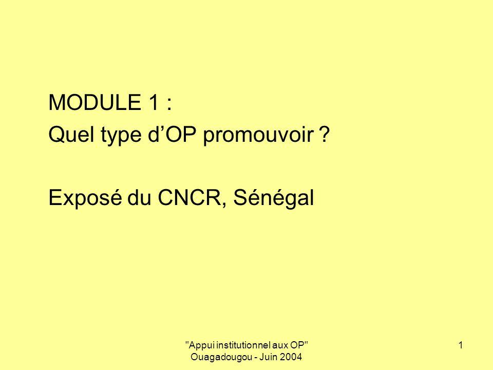 Appui institutionnel aux OP Ouagadougou - Juin 2004 2 Le CNCR : Plateforme Nationale dOPF et interface entre les OPF locales et le ROPPA Stratégies et dispositifs dappui institutionnel aux OP Ouagadougou, 08 juin 2004
