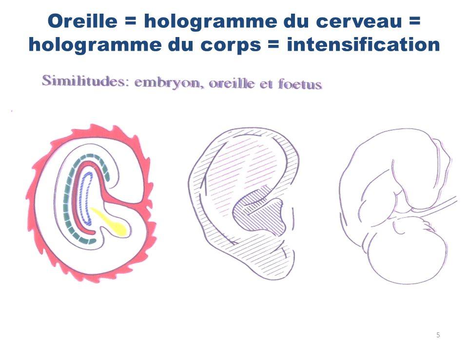 Oreille = hologramme du cerveau = hologramme du corps = intensification 5