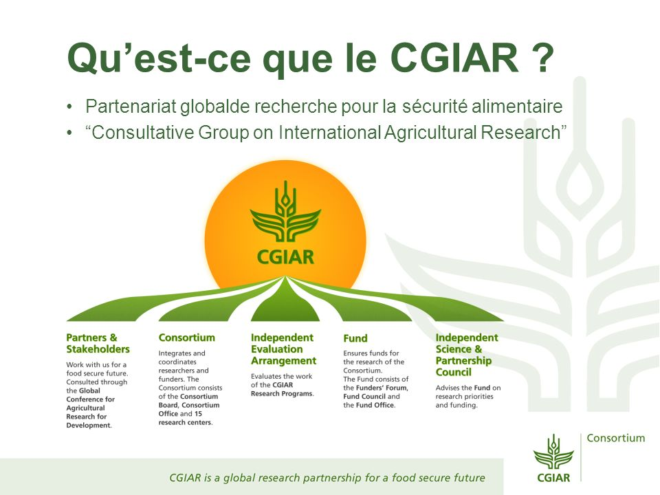 Quest-ce que le CGIAR ? Partenariat globalde recherche pour la sécurité alimentaire Consultative Group on International Agricultural Research
