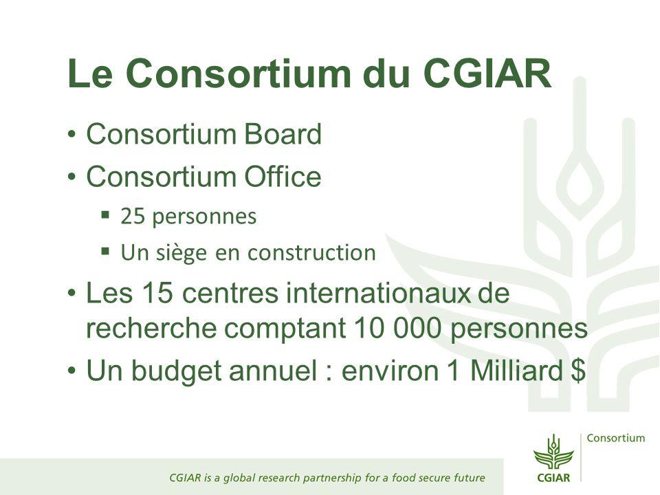Le Consortium du CGIAR Consortium Board Consortium Office 25 personnes Un siège en construction Les 15 centres internationaux de recherche comptant 10
