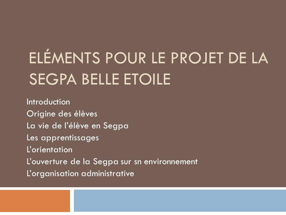 Introduction et problématique Quelle place, quel rôle de la Segpa dans le collège.