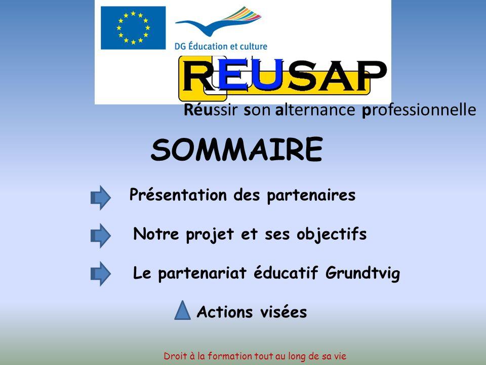 GRUNDTVIG 2008-2010 REUSSIR SON ALTERNANCE PROFESSIONNELLE EN EUROPE Droit à la formation tout au long de sa vie Réussir son alternance professionnell