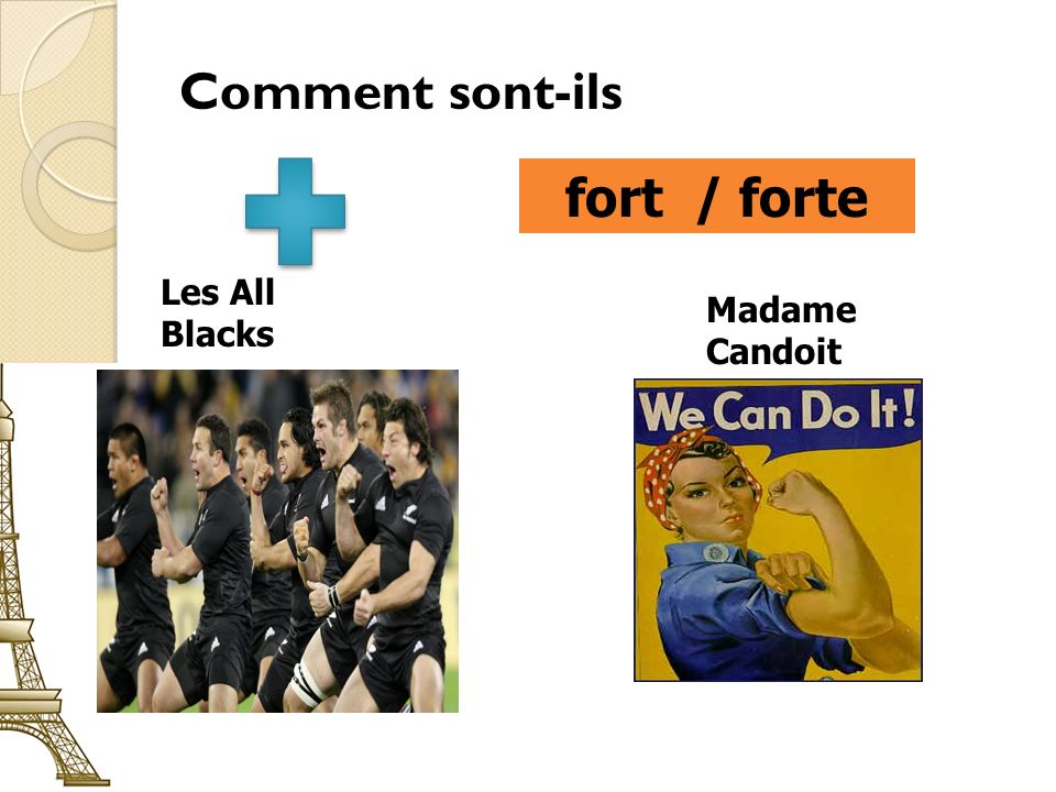 Comment sont-ils fort / forte Les All Blacks Madame Candoit