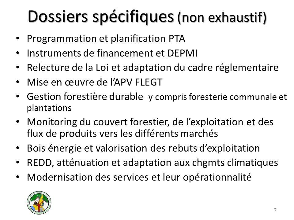 Dossiers spécifiques (non exhaustif) Programmation et planification PTA Instruments de financement et DEPMI Relecture de la Loi et adaptation du cadre