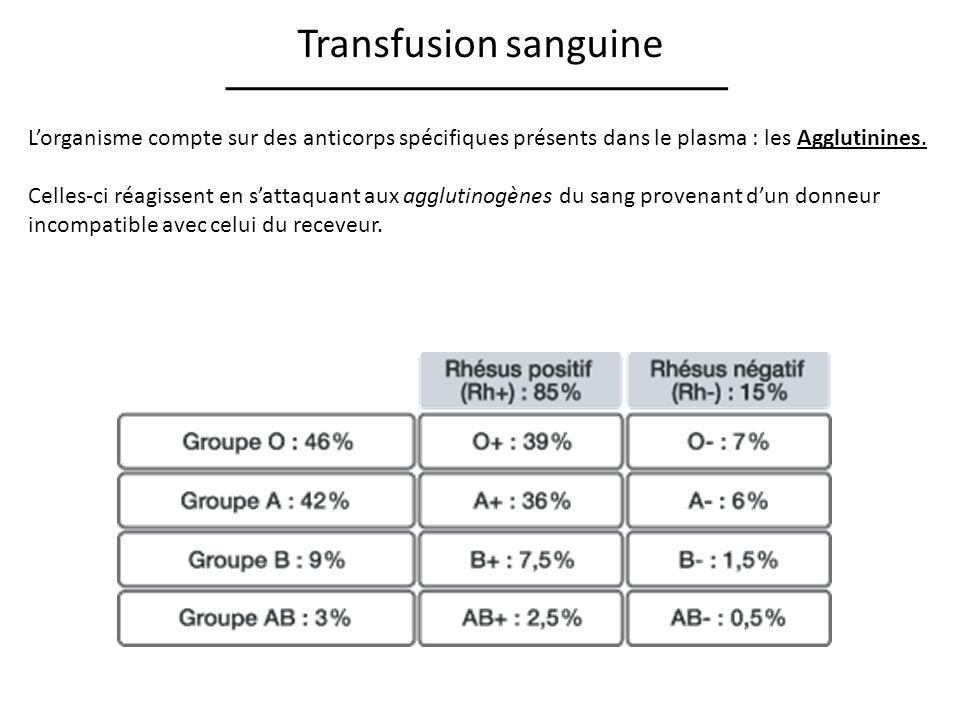 Transfusion sanguine Lorganisme compte sur des anticorps spécifiques présents dans le plasma : les Agglutinines.