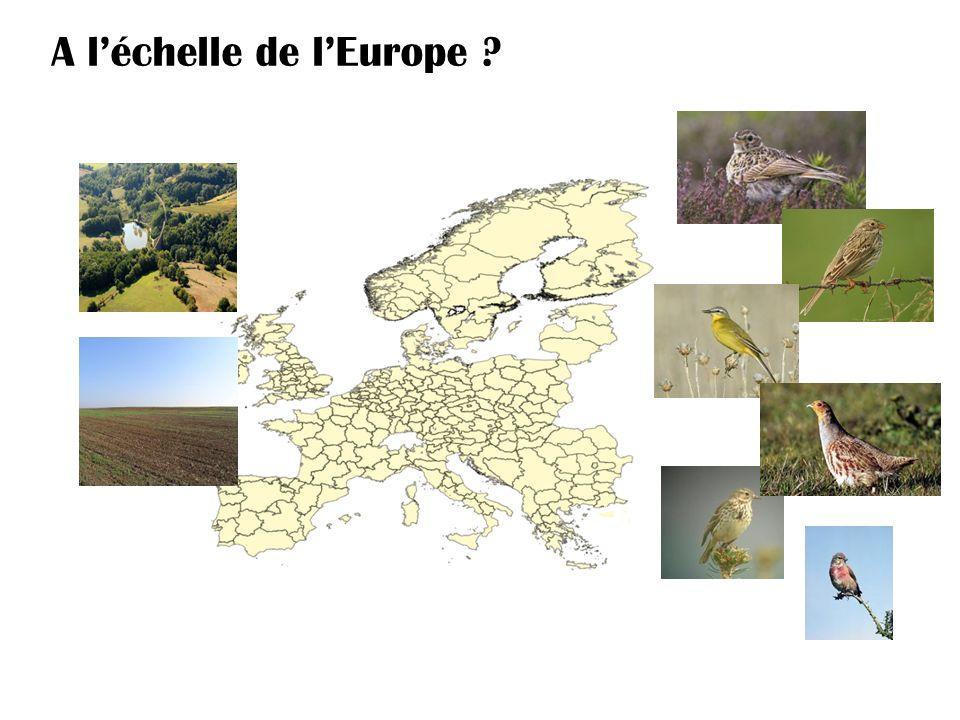 A léchelle de lEurope ?