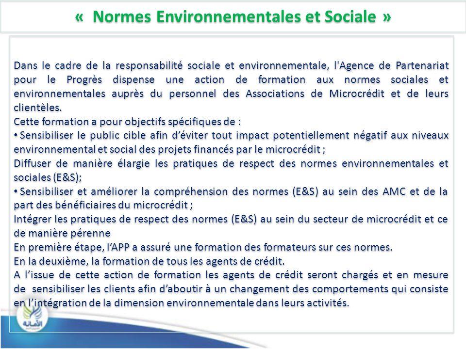 « Normes Environnementales et Sociale » Dans le cadre de la responsabilité sociale et environnementale, l Agence de Partenariat pour le Progrès dispense une action de formation aux normes sociales et environnementales auprès du personnel des Associations de Microcrédit et de leurs clientèles.