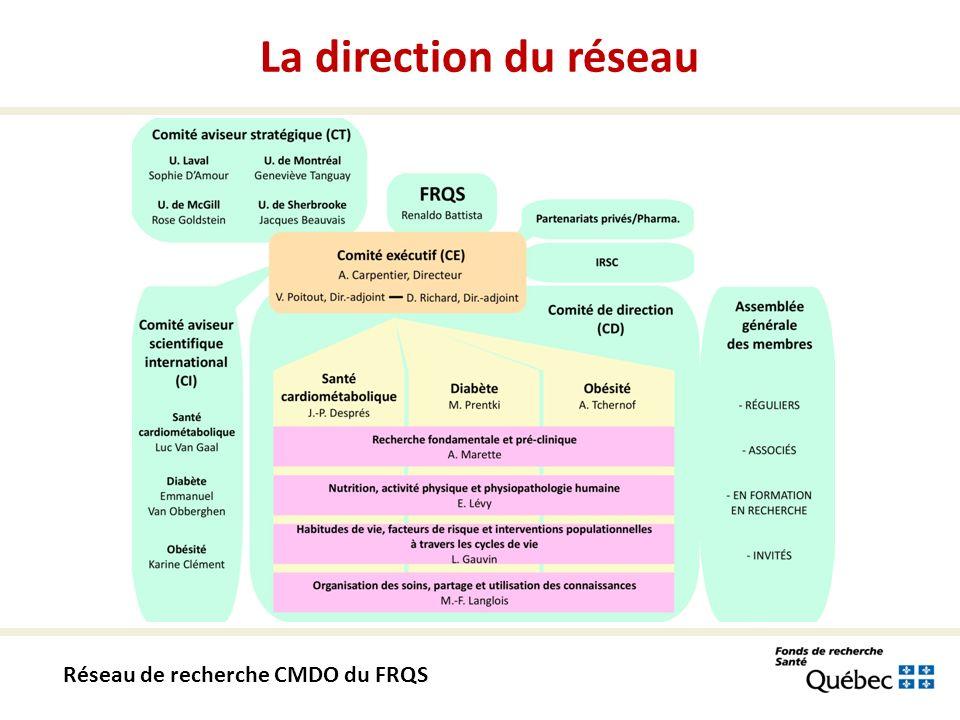 Site web du réseau CMDO Le site web est en construction et la mise en ligne est prévue pour novembre; www.rrcmdo.ca Réseau de recherche CMDO du FRQS