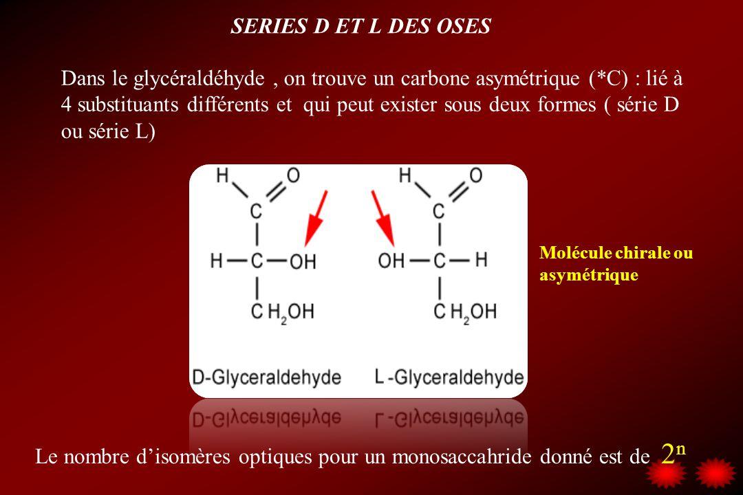 SERIES D ET L DES OSES LA PLUPART DES OSES NATURELS APPARTIENNENT A LA SERIE D; Parmi cette série D les plus fréquemment rencontrés sont : glucose, galactose, ribose, arabinose, mannose, erythrose.