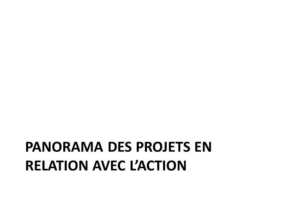 PANORAMA DES PROJETS EN RELATION AVEC LACTION