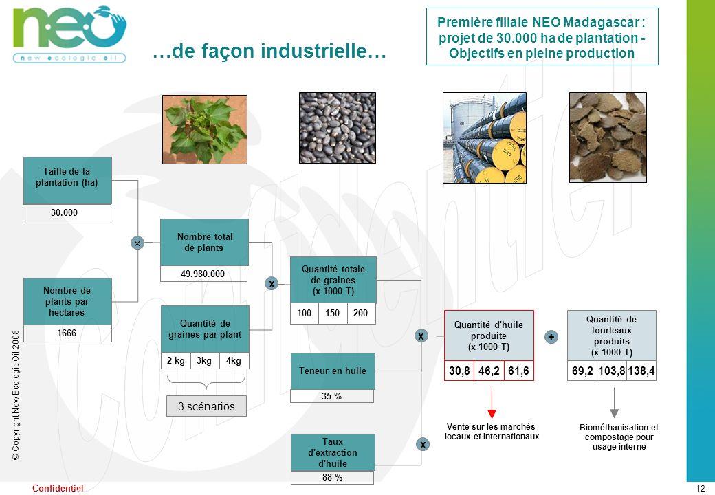 12 © Copyright New Ecologic Oil 2008 Confidentiel Taille de la plantation (ha) Nombre de plants par hectares 1666 49.980.000 Nombre total de plants x
