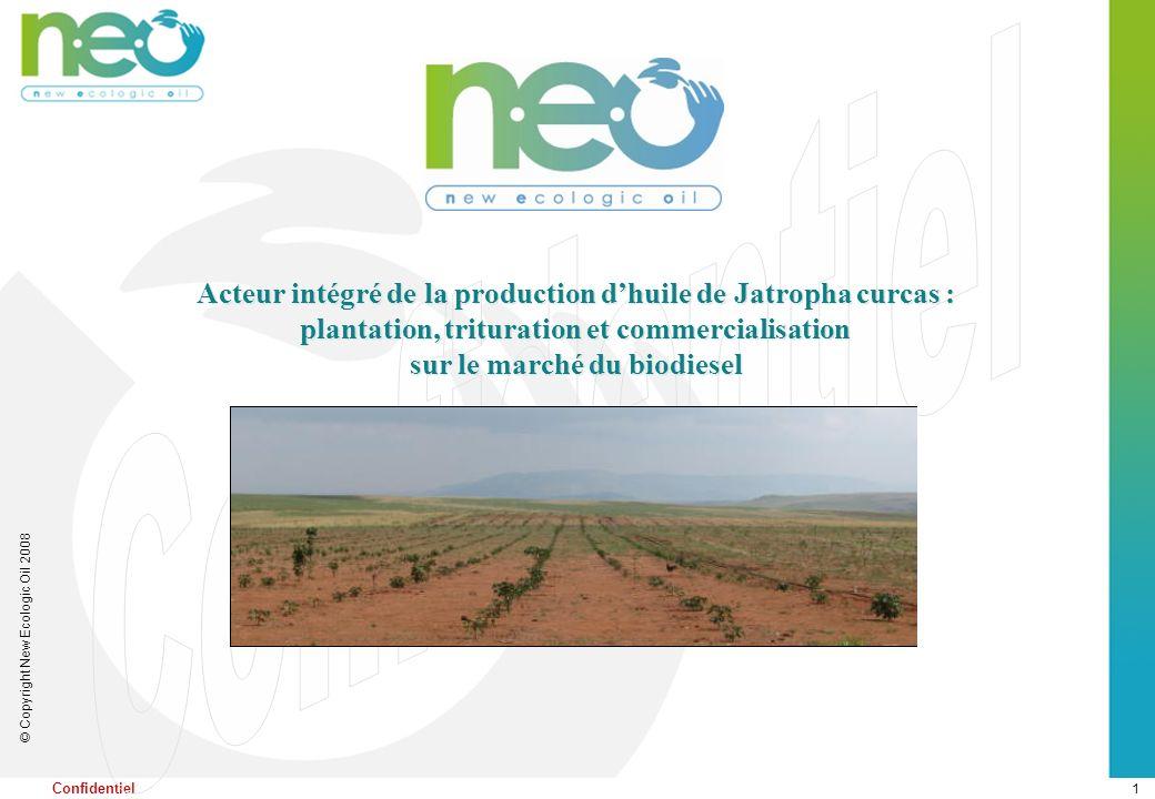 1 © Copyright New Ecologic Oil 2008 Confidentiel Acteur intégré de la production dhuile de Jatropha curcas : plantation, trituration et commercialisat
