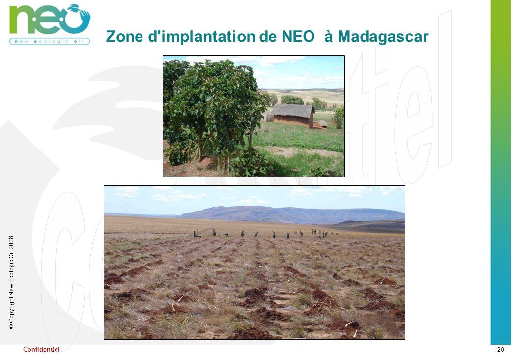 20 © Copyright New Ecologic Oil 2008 Confidentiel Zone d'implantation de NEO à Madagascar