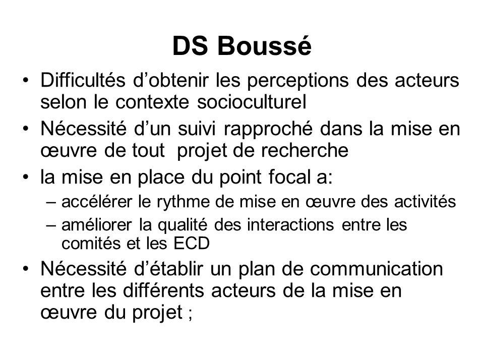 DS Boussé Difficultés dobtenir les perceptions des acteurs selon le contexte socioculturel Nécessité dun suivi rapproché dans la mise en œuvre de tout