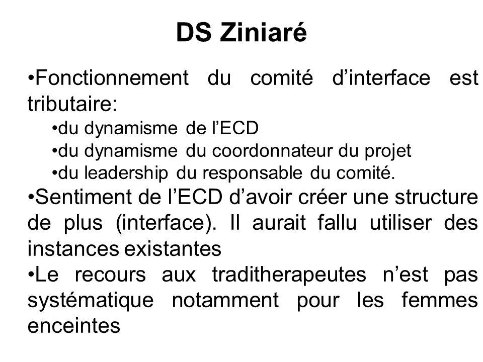 DS Ziniaré Fonctionnement du comité dinterface est tributaire: du dynamisme de lECD du dynamisme du coordonnateur du projet du leadership du responsab