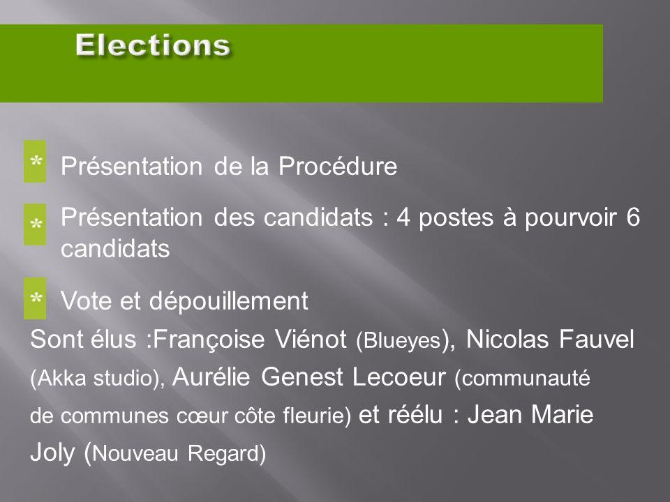 Présentation de la Procédure Présentation des candidats : 4 postes à pourvoir 6 candidats Vote et dépouillement Sont élus :Françoise Viénot (Blueyes )