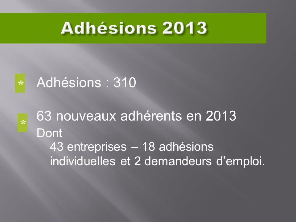 Adhésions : 310 63 nouveaux adhérents en 2013 Dont 43 entreprises – 18 adhésions individuelles et 2 demandeurs demploi.