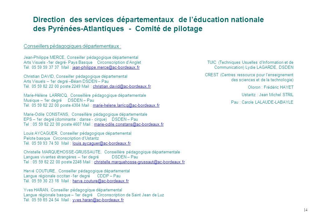 Direction des services départementaux de léducation nationale des Pyrénées-Atlantiques - Comité de pilotage Conseillers pédagogiques départementaux :