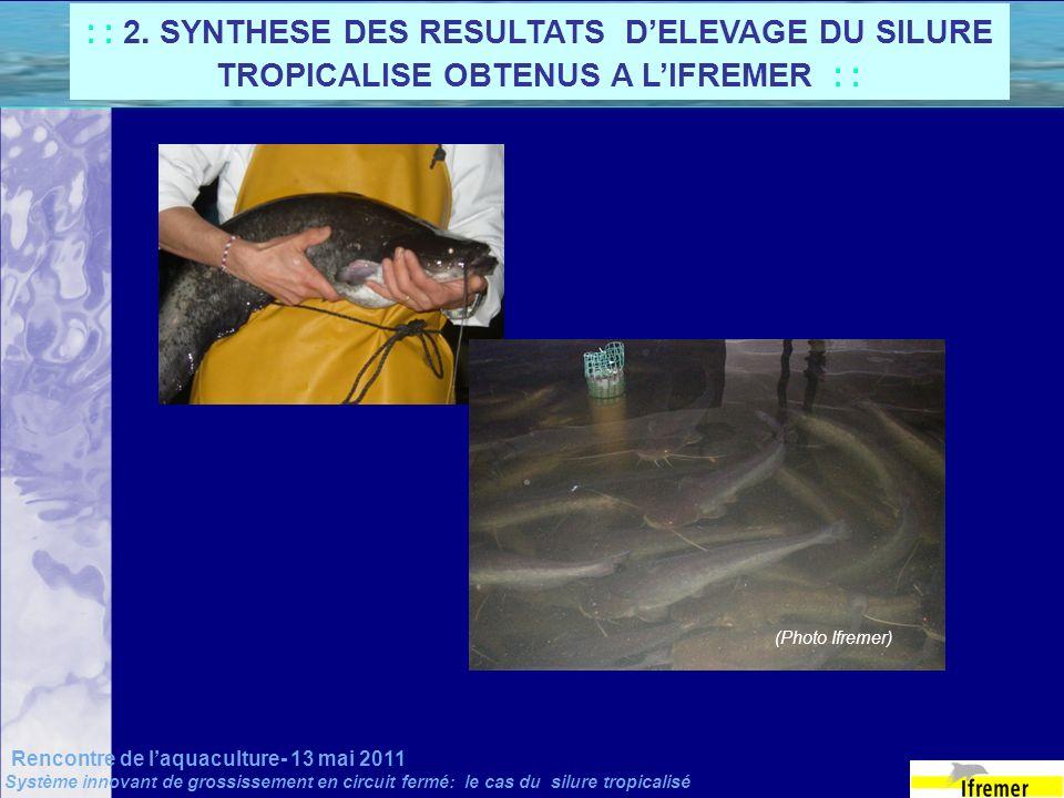 Rencontre de laquaculture- 13 mai 2011 Système innovant de grossissement en circuit fermé: le cas du silure tropicalisé : : 2. SYNTHESE DES RESULTATS