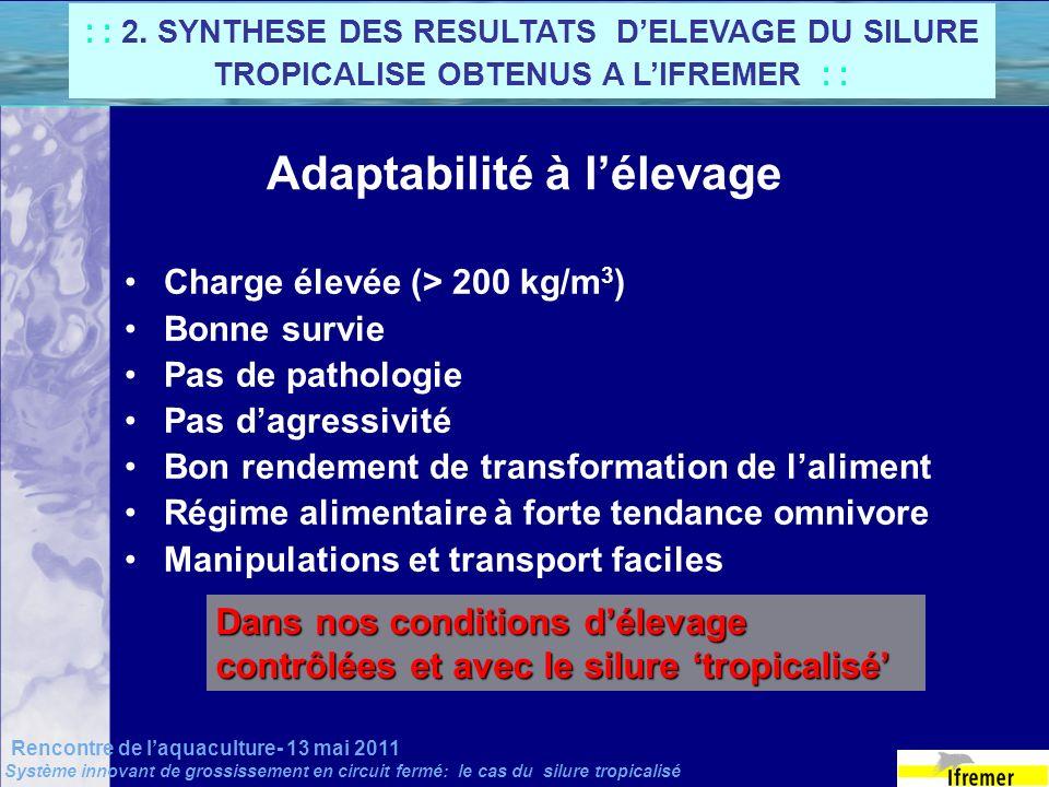 Rencontre de laquaculture- 13 mai 2011 Système innovant de grossissement en circuit fermé: le cas du silure tropicalisé Adaptabilité à lélevage Charge