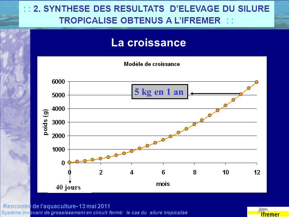 Rencontre de laquaculture- 13 mai 2011 Système innovant de grossissement en circuit fermé: le cas du silure tropicalisé La croissance 5 kg en 1 an 40