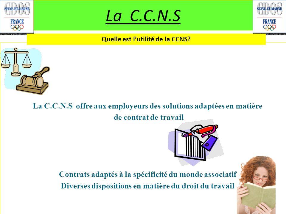 La C.C.N.S La C.C.N.S offre aux employeurs des solutions adaptées en matière de contrat de travail Contrats adaptés à la spécificité du monde associat